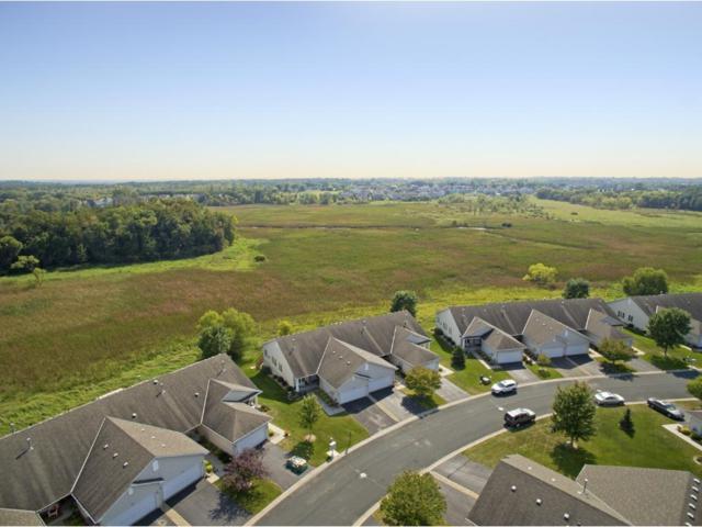 17382 Deerfield Drive SE, Prior Lake, MN 55372 (#4878238) :: The Preferred Home Team