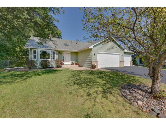 5088 S Park Drive, Savage, MN 55378 (#4878418) :: The Preferred Home Team