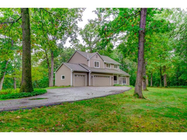 5290 Odell Avenue S, Afton, MN 55001 (#4879280) :: The Snyder Team