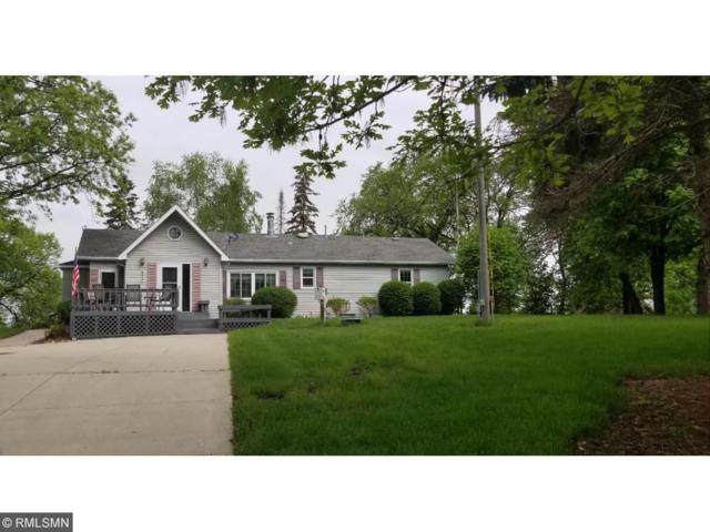 14938 49th Avenue NE, Atwater, MN 56209 (#4882515) :: The Preferred Home Team