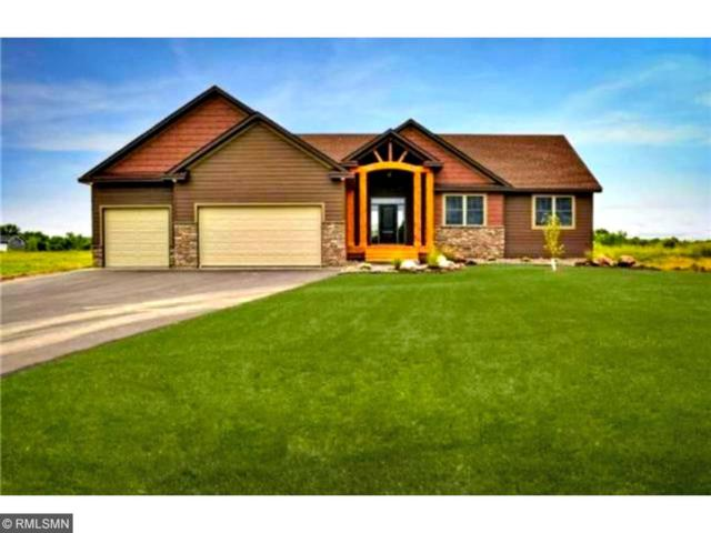 10101 246th Street N, Chisago City, MN 55013 (#4886445) :: The Preferred Home Team