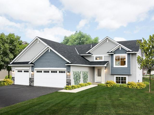 3350 191st Street W, Farmington, MN 55024 (#4889645) :: The Preferred Home Team