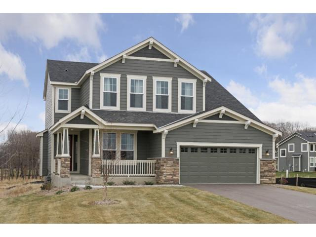 4232 Woodland Cove Parkway, Minnetrista, MN 55331 (#4890488) :: Norse Realty