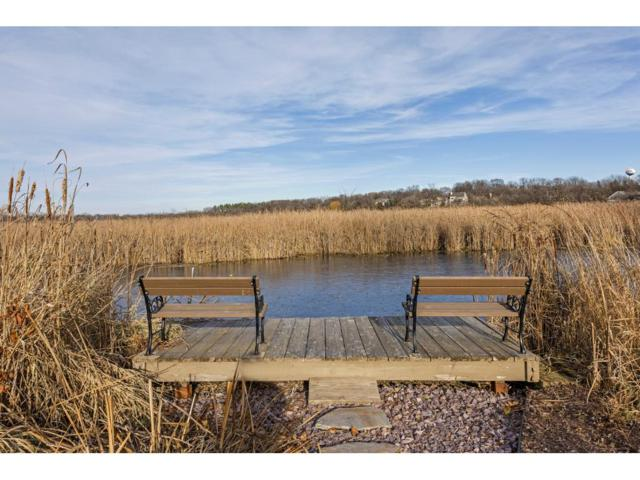 217 William Lakeshore Drive, Waconia, MN 55387 (#4894261) :: Norse Realty