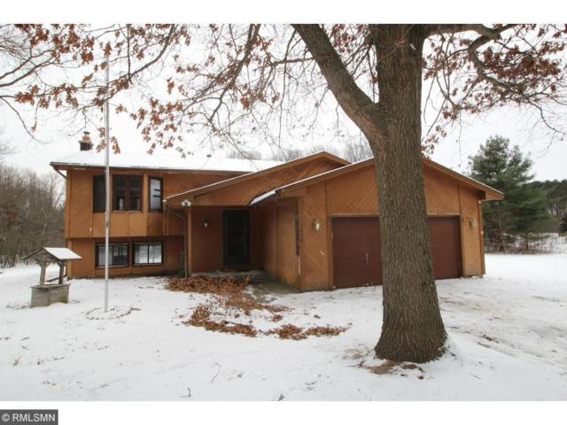 1836 226th Lane NE, East Bethel, MN 55005 (#4895574) :: The Snyder Team