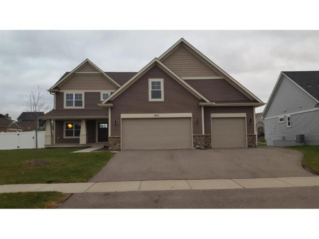 8552 193rd Street W, Lakeville, MN 55044 (#4896037) :: The Snyder Team