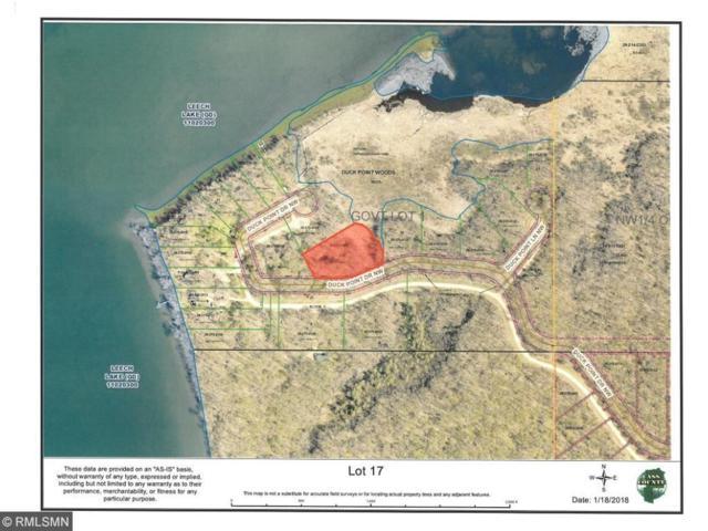 XXXX Duck Point Drive NW, Cass Lake, MN 56633 (#4901525) :: The Sarenpa Team