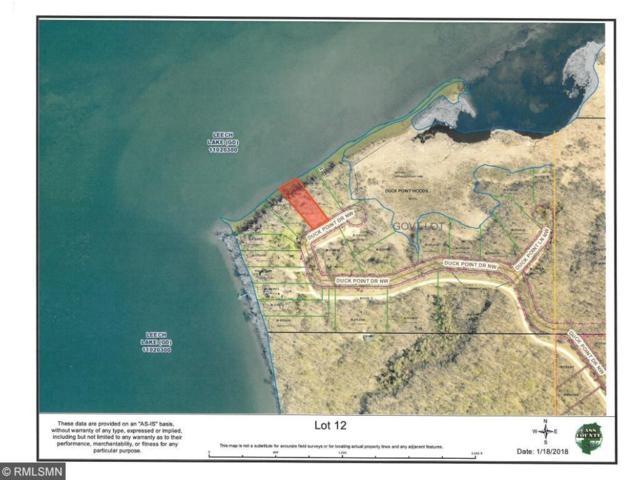 xx Duck Point Drive NW, Cass Lake, MN 56633 (#4901618) :: The Sarenpa Team