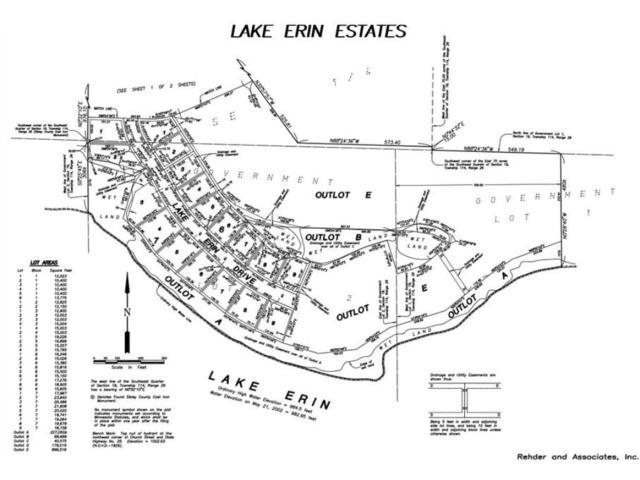 375 Lake Erin Drive, Green Isle, MN 55338 (#4902765) :: The Sarenpa Team