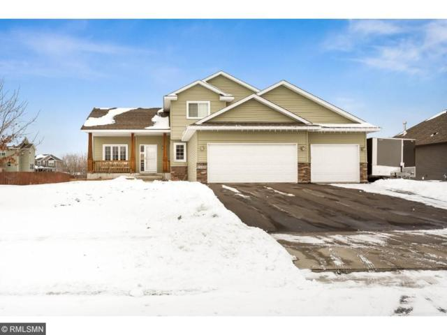23578 127th Avenue, Rogers, MN 55374 (#4902900) :: The Preferred Home Team