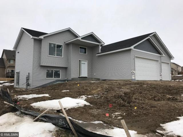 1107 Tikalsky Street SE, New Prague, MN 56071 (#4904292) :: The Hergenrother Group North Suburban