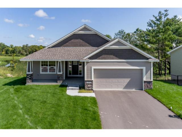 6759 21st Avenue S, Lino Lakes, MN 55038 (#4906059) :: The Snyder Team