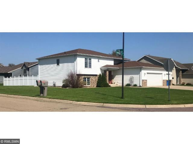 2190 Sunlight Avenue SE, Owatonna, MN 55060 (#4907598) :: The Hergenrother Group North Suburban