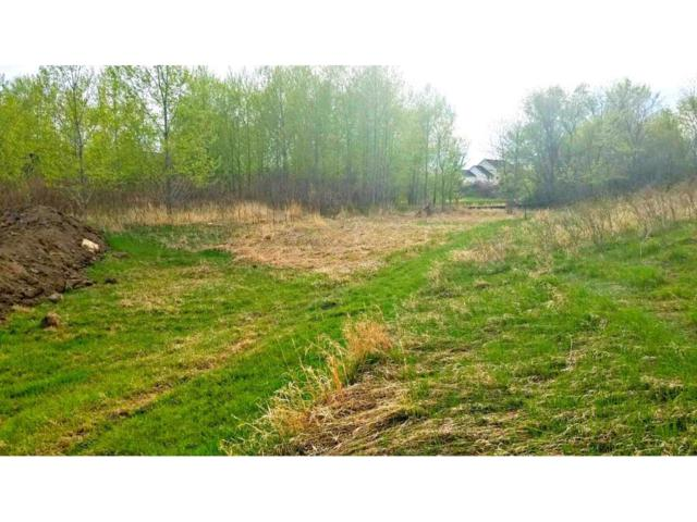 Lot 2  Blk 1 O'day Court, Otsego, MN 55330 (#4909735) :: The MN Team