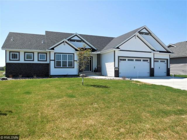 322 143rd Avenue NW, Andover, MN 55304 (#4919273) :: The Preferred Home Team