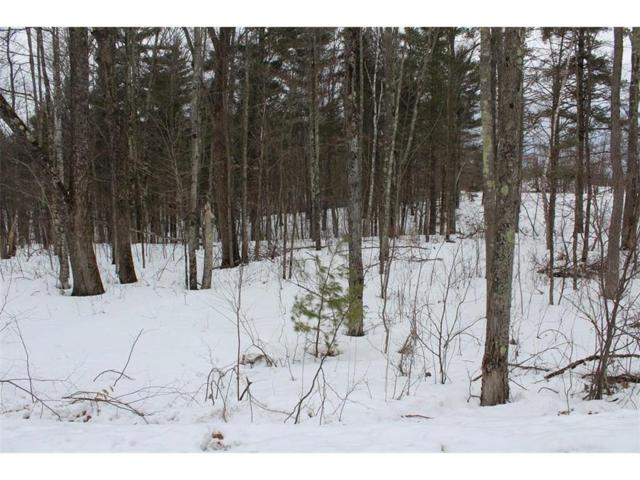 Lot 2 Hidden Woods Dr, Hayward Twp, WI 54843 (#4920139) :: The Sarenpa Team
