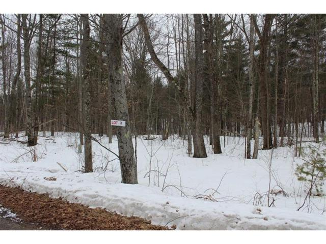 Lot 3 Hidden Woods Dr, Hayward Twp, WI 54843 (#4920142) :: The Sarenpa Team