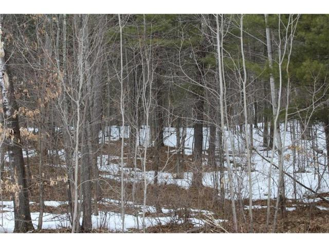 Lot 10 Hidden Woods Dr, Hayward Twp, WI 54843 (#4920159) :: The Sarenpa Team