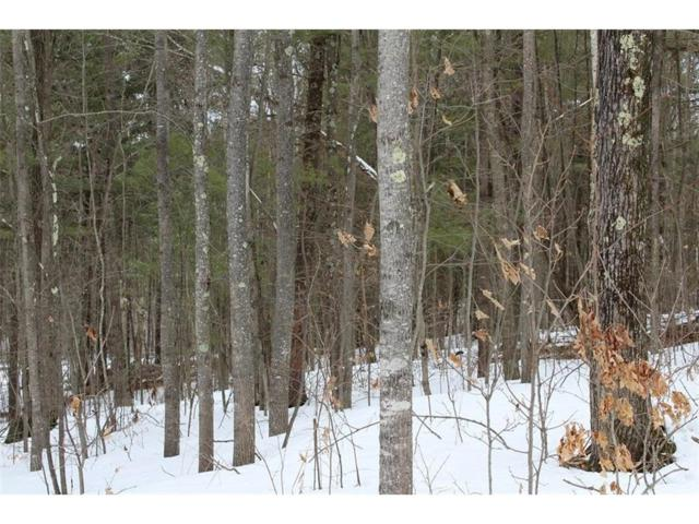 Lot 16 Hidden Woods Dr, Hayward Twp, WI 54843 (#4920163) :: The Sarenpa Team