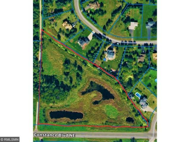 XXX Constance Boulevard NE, Ham Lake, MN 55304 (#4941182) :: The Preferred Home Team