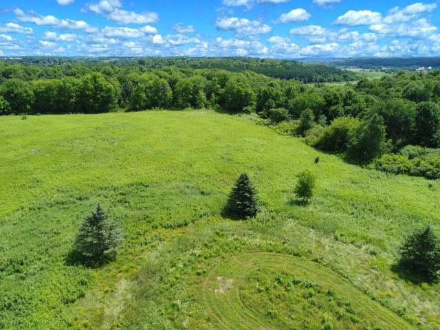 Lot 3 Surrey Ridge Trail, Glenwood City, WI 54013 (#4942452) :: The Preferred Home Team