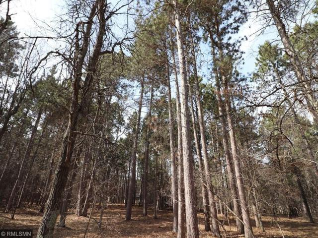 Lot 8 Explorer Circle, Park Rapids, MN 56470 (#4944611) :: The Sarenpa Team