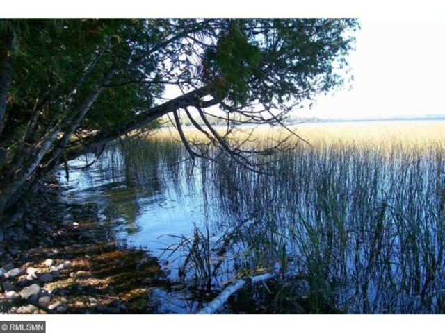XXXX Sandy Point Road, Northome, MN 56661 (#4953258) :: The Preferred Home Team