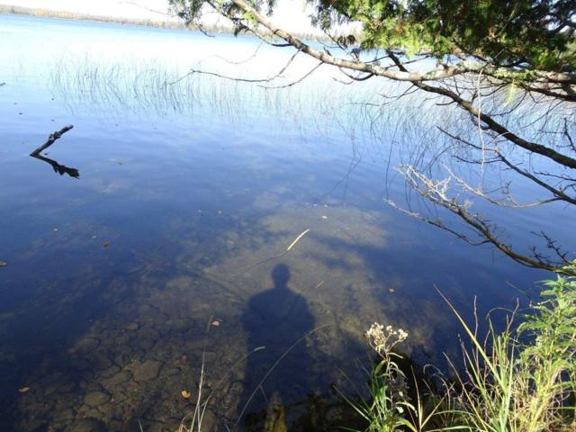 XXX Echo Pine Trail, Remer, MN 56672 (#4955127) :: The Preferred Home Team