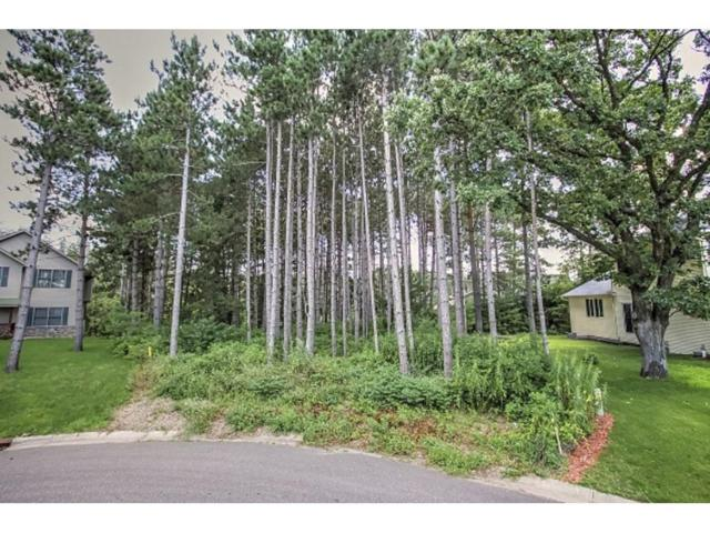 25663 22nd Street W, Zimmerman, MN 55398 (#4955222) :: The Preferred Home Team