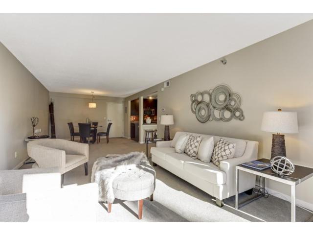 48 Groveland Terrace B312, Minneapolis, MN 55403 (#4961790) :: The Sarenpa Team