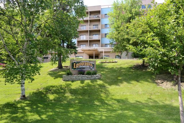 311 Pleasant Avenue #212, Saint Paul, MN 55102 (#4964238) :: The Preferred Home Team