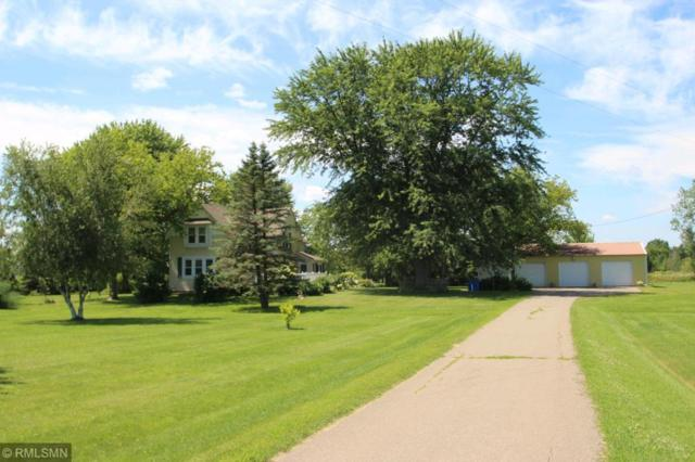 48642 Gallant Avenue, Rushseba Twp, MN 55069 (#4964714) :: The Preferred Home Team