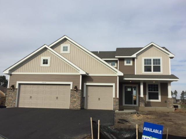 7515 159th Avenue NW, Ramsey, MN 55303 (#4972007) :: The Preferred Home Team