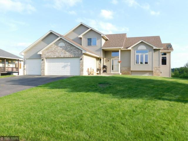 3140 228th Lane NW, Oak Grove, MN 55005 (#4974202) :: The Snyder Team