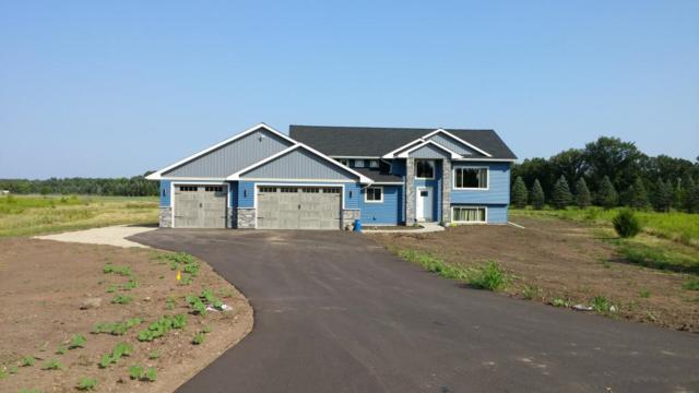 855 Brady Lane, New Richmond, WI 54017 (MLS #4982224) :: The Hergenrother Realty Group