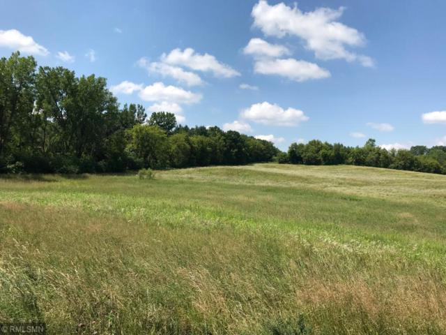 24877 Harvest Meadows Court, Lakeville, MN 55044 (#4983000) :: The Sarenpa Team
