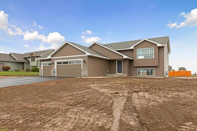 1009 Wyoming Street, Roberts, WI 54023 (#4983062) :: The MN Team