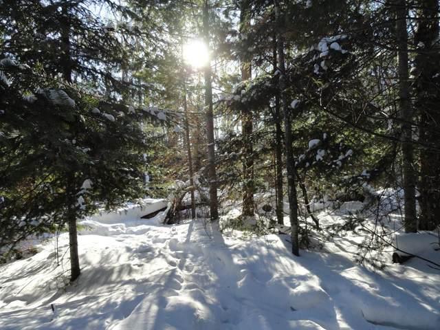 6047 Voyageurs Trail, Biwabik, MN 55708 (#4992488) :: Holz Group