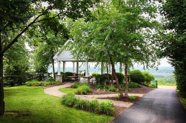 9988 Vervain Drive, Eden Prairie, MN 55347 (#4992867) :: Twin Cities Listed