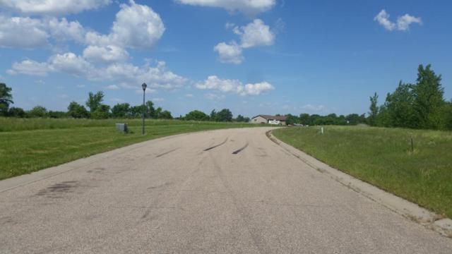 360 Erin Lake Drive, Green Isle, MN 55338 (#4992999) :: The Preferred Home Team