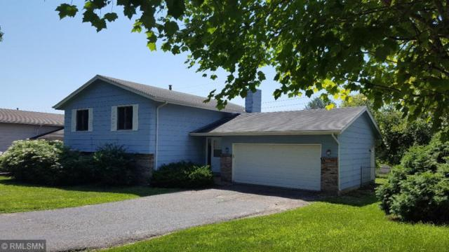 5613 W 136th Street, Savage, MN 55378 (#4993105) :: The Janetkhan Group