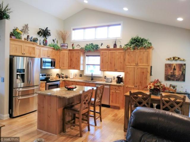 4888 384th Trail, North Branch, MN 55056 (#4996495) :: The Snyder Team