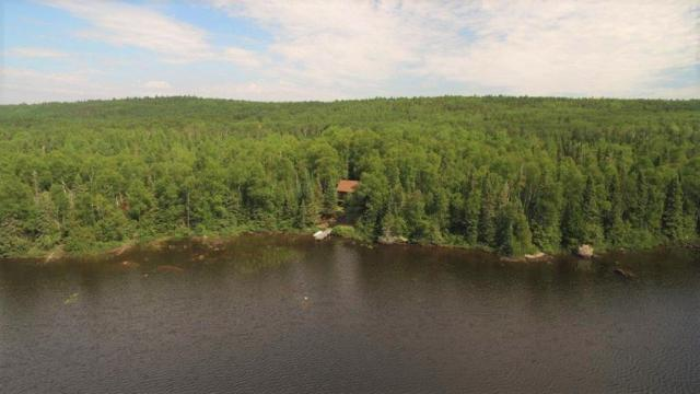 328 The Grade, Grand Marais, MN 55604 (#4998413) :: Lakes Country Realty LLC