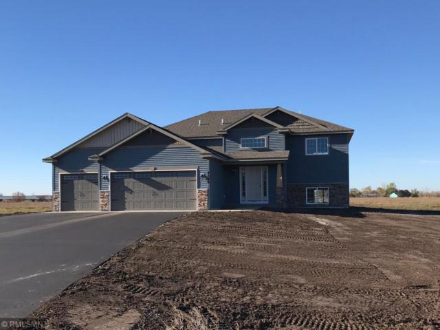 8568 119th Avenue SE, Clear Lake, MN 55319 (#5000814) :: Olsen Real Estate Group
