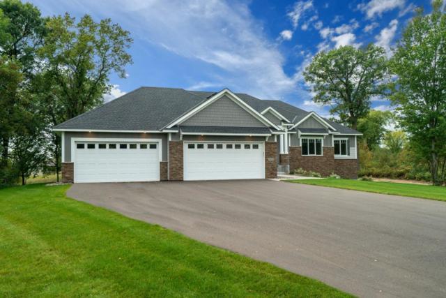 3842 191st Lane NW, Oak Grove, MN 55303 (#5004560) :: The Sarenpa Team