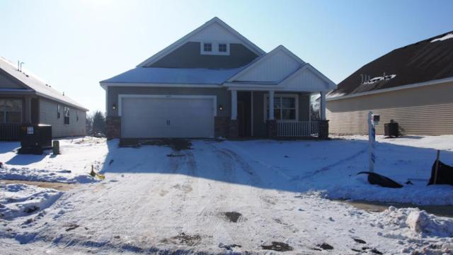 8255 63rd Street S, Cottage Grove, MN 55016 (#5007038) :: The MN Team