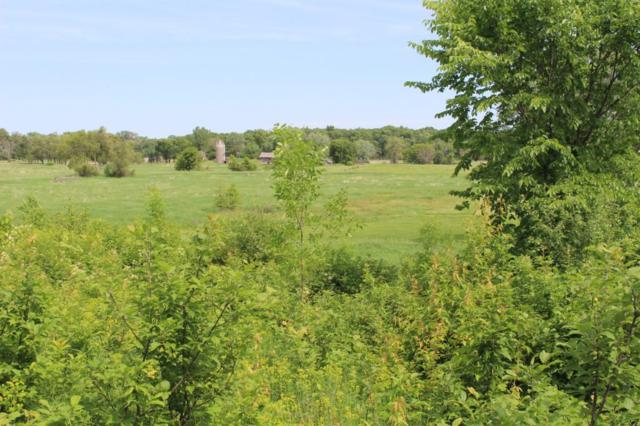 6410 County Road 116, Corcoran, MN 55340 (#5007388) :: The Snyder Team