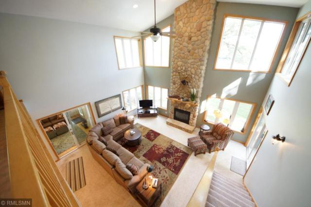 16614 109th Street NW, Southside Twp, MN 55382 (#5009433) :: The Preferred Home Team
