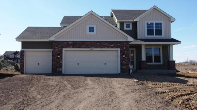 6006 63rd Street, Cottage Grove, MN 55016 (#5011327) :: The MN Team