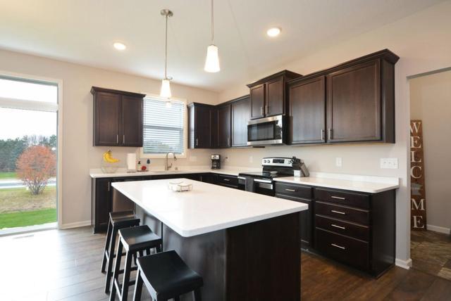 7939 Mackenzie Street NE, Otsego, MN 55330 (#5026484) :: House Hunters Minnesota- Keller Williams Classic Realty NW